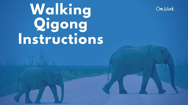 Walking Qigong Instructions (17 min)
