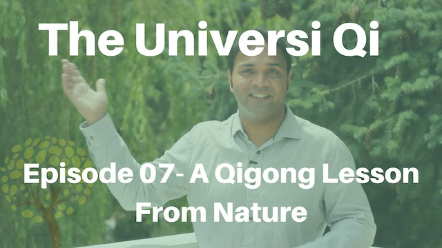Universi Qi Episode 7 - A Qigong Lesson From Nature (2 mins)