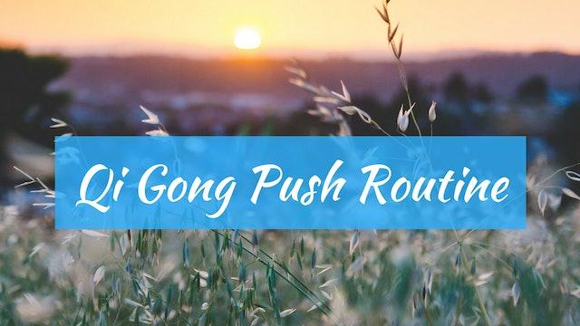 Silent Qigong Push Routine (16 min)