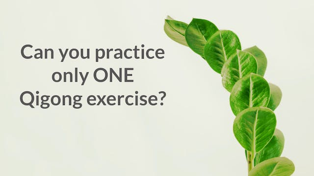 Can you practice only one exercise? (...