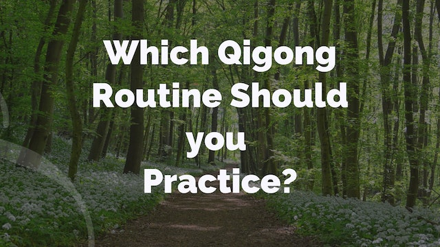'Q and A' Episode 2 - Which QiGong Routine Should I Practice? (11 mins)