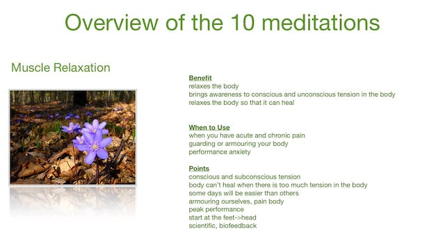 Overview Of the 10 Meditations (8 mins)