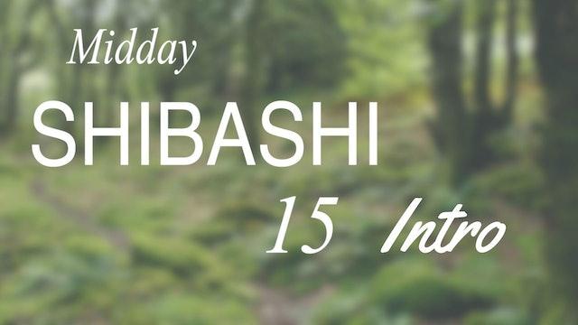 Intro to Mid-day Shibashi 15 Routine (3 mins)