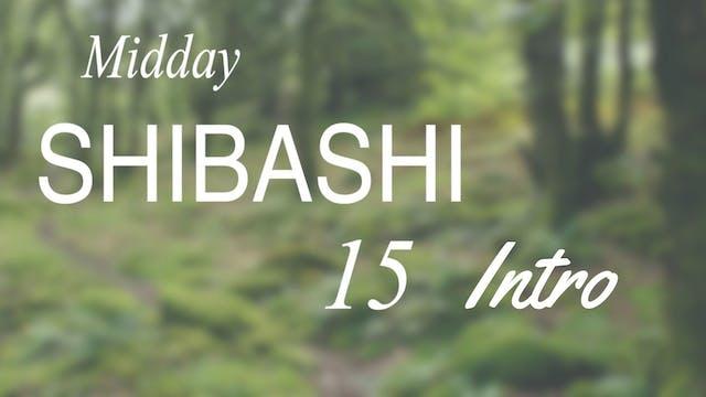 Intro to Mid-day Shibashi 15 Routine ...