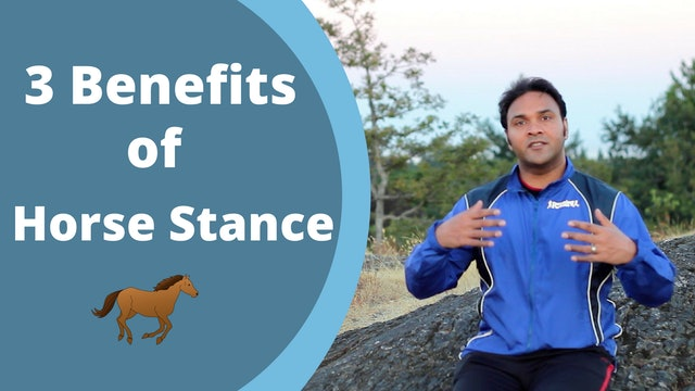 3 Reasons to Practice Horse Stance (3 mins)