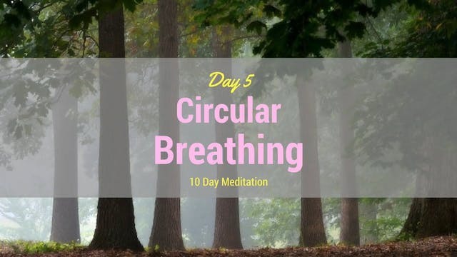Day 5 Meditation - Circular Breathing...