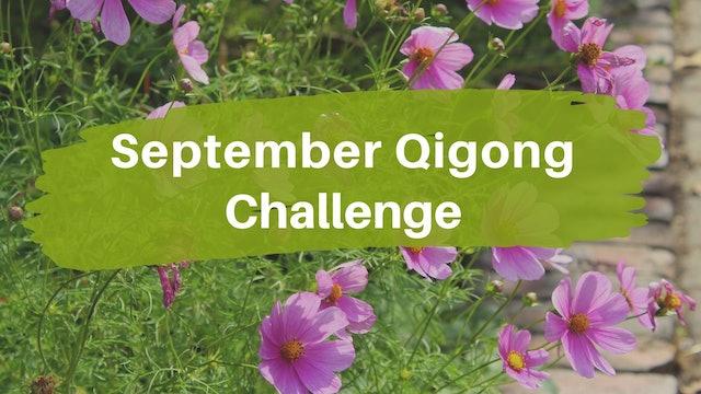 September Qigong Challenge (4 mins)