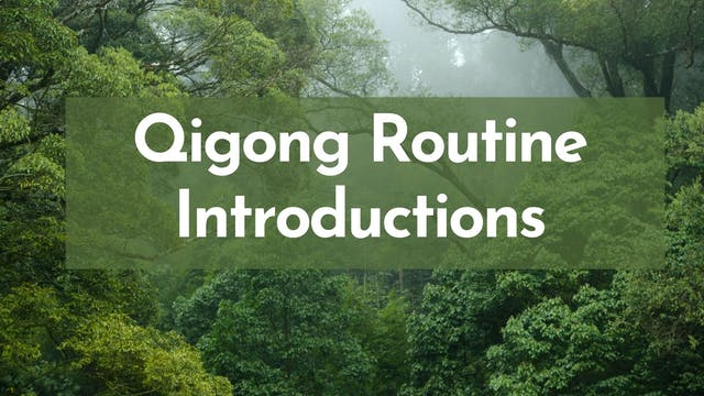 Qigong Routine Introductions