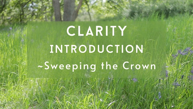 Clarity Introduction - Sweeping the Crown (5 mins)