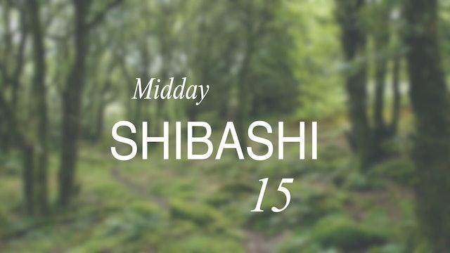 Midday Shibashi -15 (15 mins)