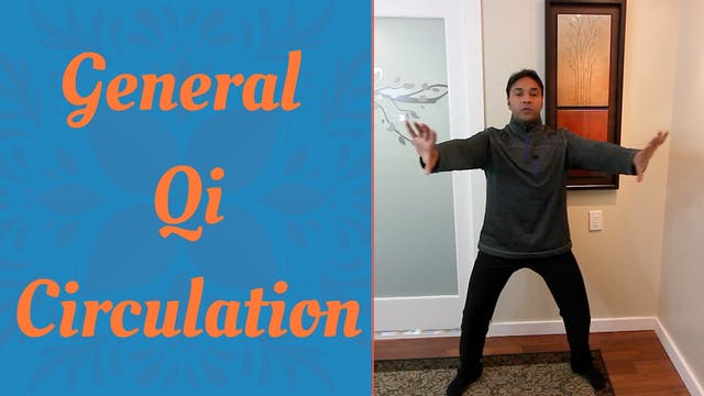 General Qi Circulation (25 mins)