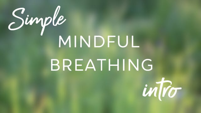 Simple Mindful Breathing Intro (4 mins)