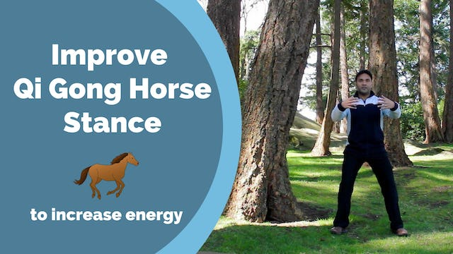 Help with Horse Stance - Use a Tree! (5 mins)