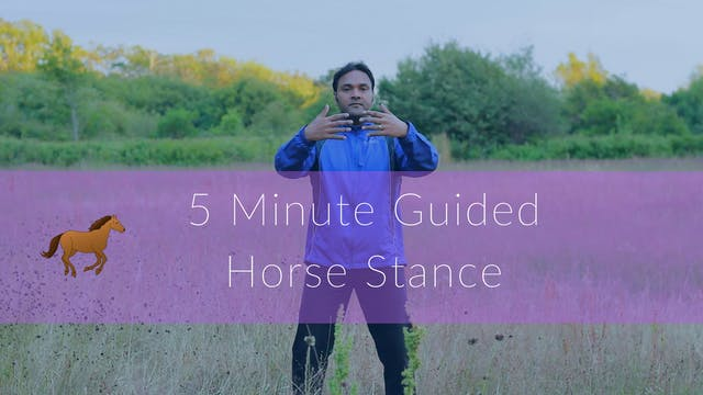 5 Minute Guided Horse Stance (5 mins)