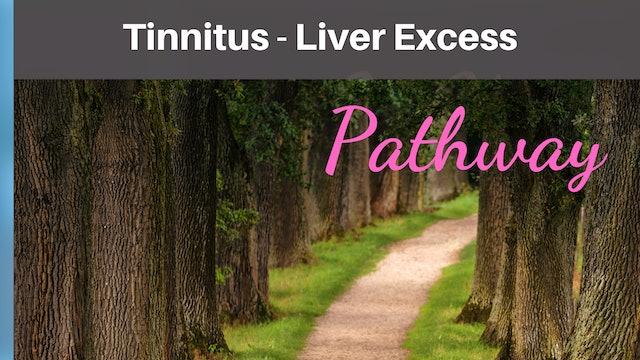 Tinnitus Liver Excess Qi-T-Sheet