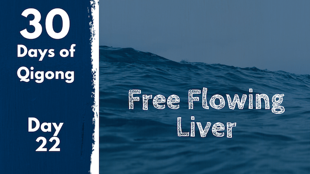 Day 22 Free Flowing Liver (19 mins)