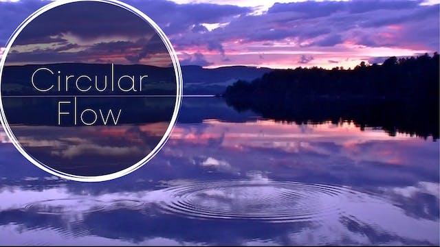 Circular Flow (20 mins)