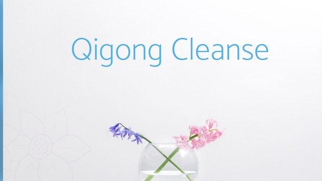 Qigong Cleanse (14 mins)