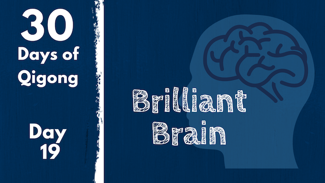 Day 19 Brilliant Brain (22 mins)