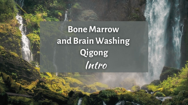Intro to Bone Marrow and Brain Washing Qigong Routine (3 min)