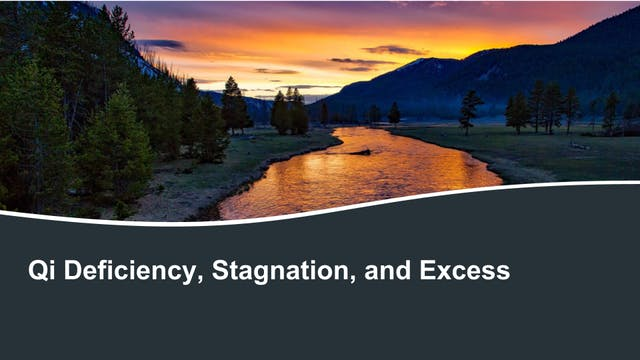 Qi deficiency, excess, and stagnation...