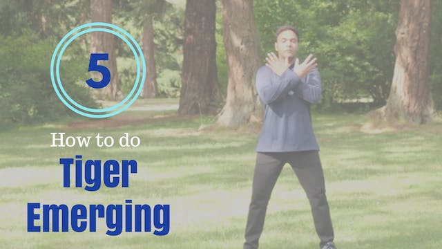 How to do 'Tiger Emerging' (5 mins)