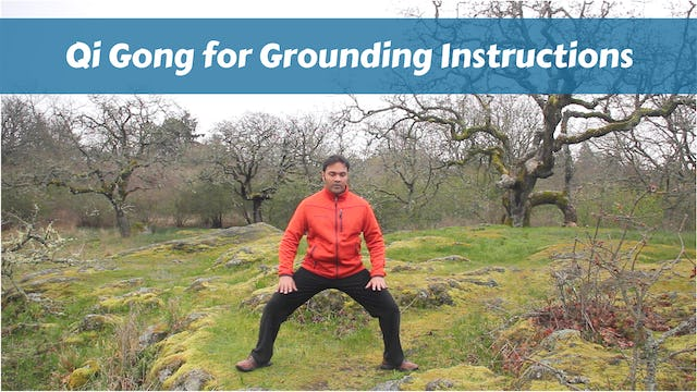 "INSTRUCTIONS: ""Qi Gong for Grounding Routine"" (22 mins)"