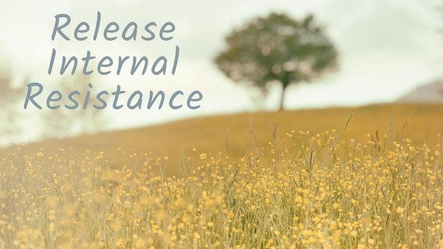 Release Internal Resistance (19 mins)