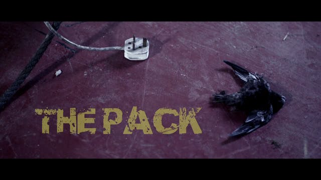 The Pack (advised 15)