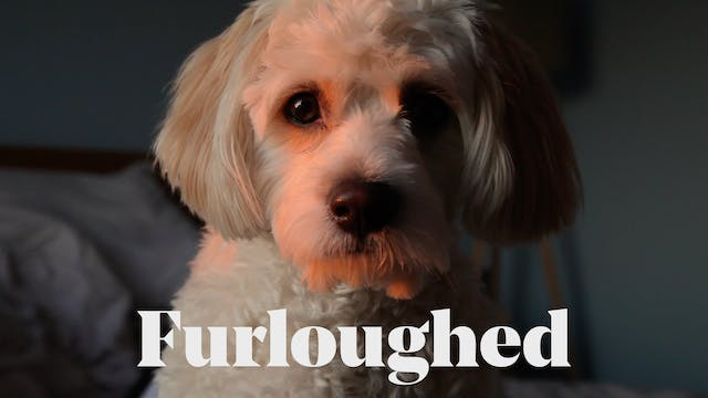 Furloughed - a short film by Dominic ...