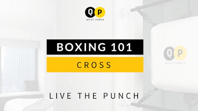 Boxing 101 - Cross