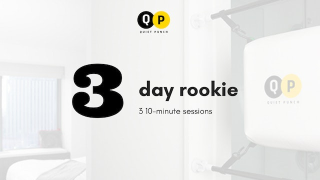 3 Day Rookie (Bronze Level)