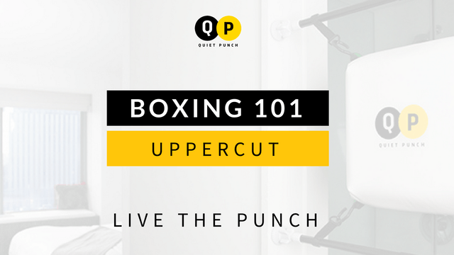 Boxing 101 - Uppercut
