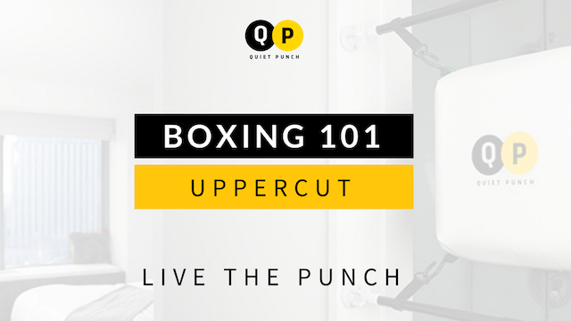 Boxing 101 - Uppercut