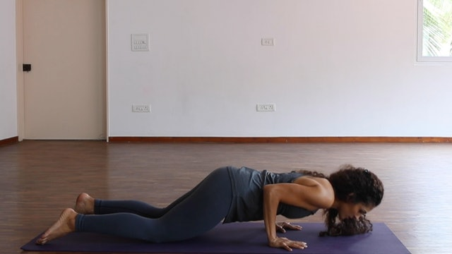 Arm positions: Plank