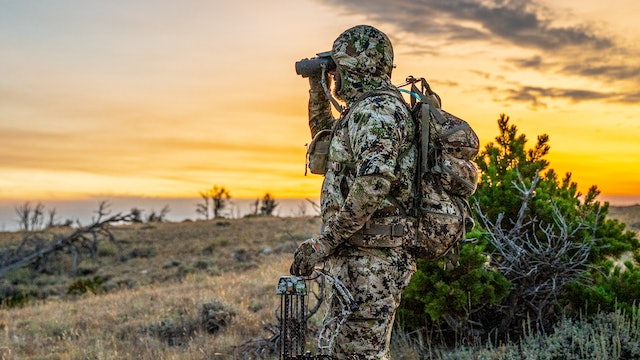 The Thrill of Bowhunting | Wyoming Archery Elk with Michael Parente