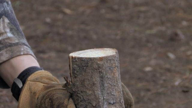 On Your Own Adventures: Season 1, Episode 6 - Montana Elk