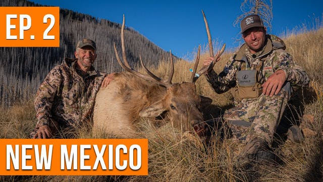 His FIRST Elk!   New Mexico Sweepstak...