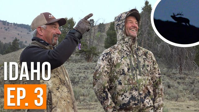 Calling Elk FROM CAMP! | Idaho Archer...