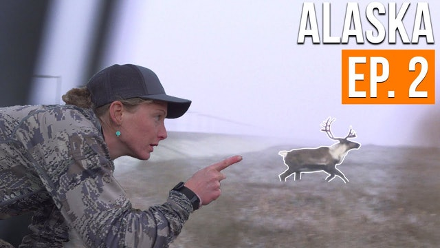 SURROUNDED BY CARIBOU | Alaska Moose & Caribou (EP. 2)