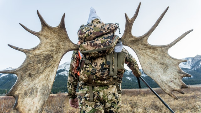 Montana Moose Magic