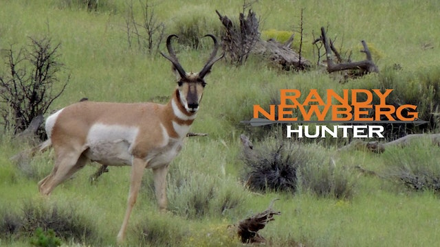 New Mexico Archery Hunt - Pronghorn and Puppy