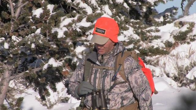 On Your Own Adventures: Season 4, Episode 7 - Wyoming Elk