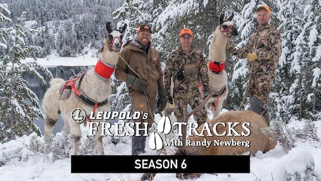 Fresh Tracks – Season 6