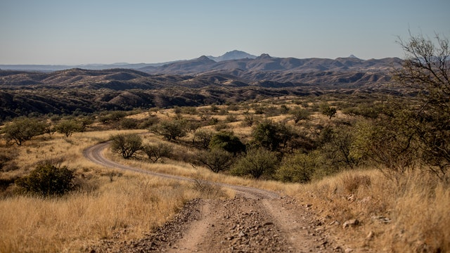 Southern Arizona Sonoran Safari