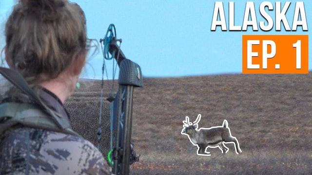 Bowhunting for CARIBOU | Alaska Moose & Caribou (EP. 1)