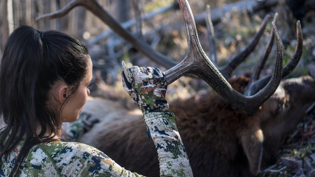 New Mexico Rifle Elk with Bruce and Tracey Pettet