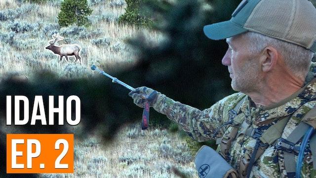 We Got On The Herd | Idaho Archery Elk (EP. 2)