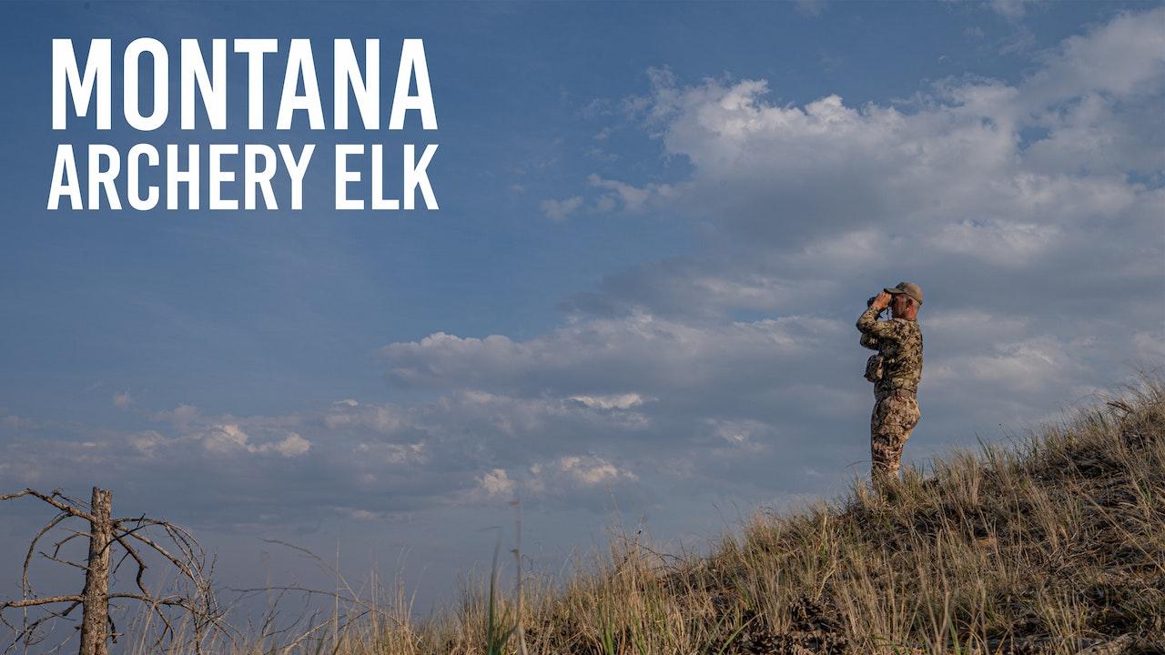 Montana Archery Elk