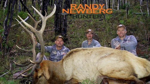 New Mexico Rifle Elk with Leupold's Bruce Pettet